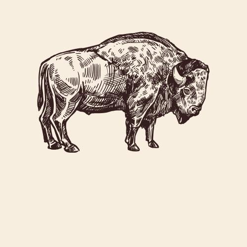 Buffalo Spirit Animal Totem