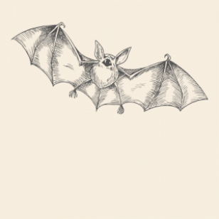 Bat Spirit Animal Totem